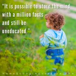 A million facts does not an education make.